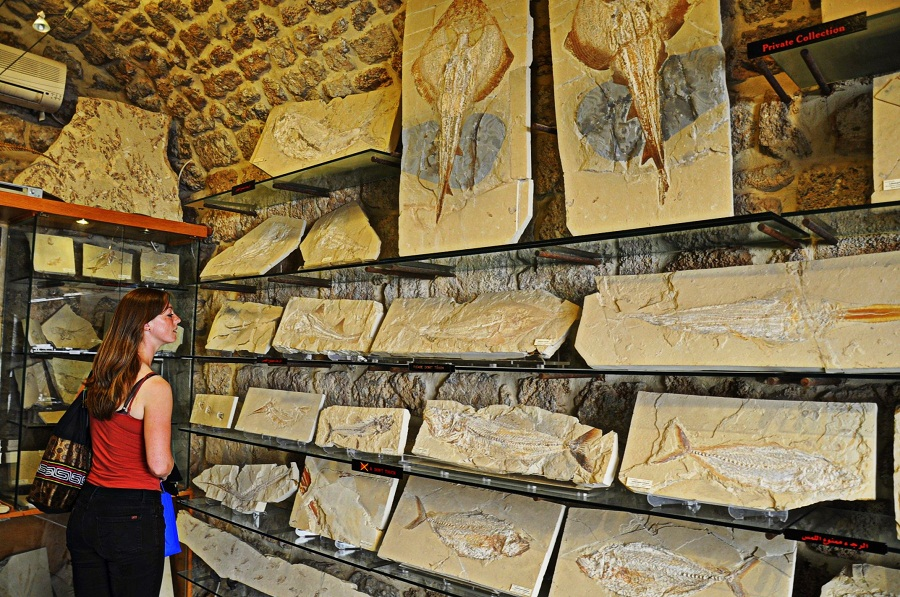byblos fossils